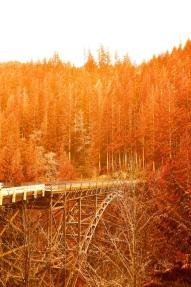 Carbonado Bridge on the way to Mt. Rainier National Park