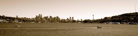 View of Needle from Lake Union
