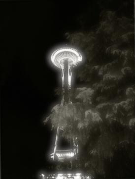 Needle nestled in Evergreen Trees.